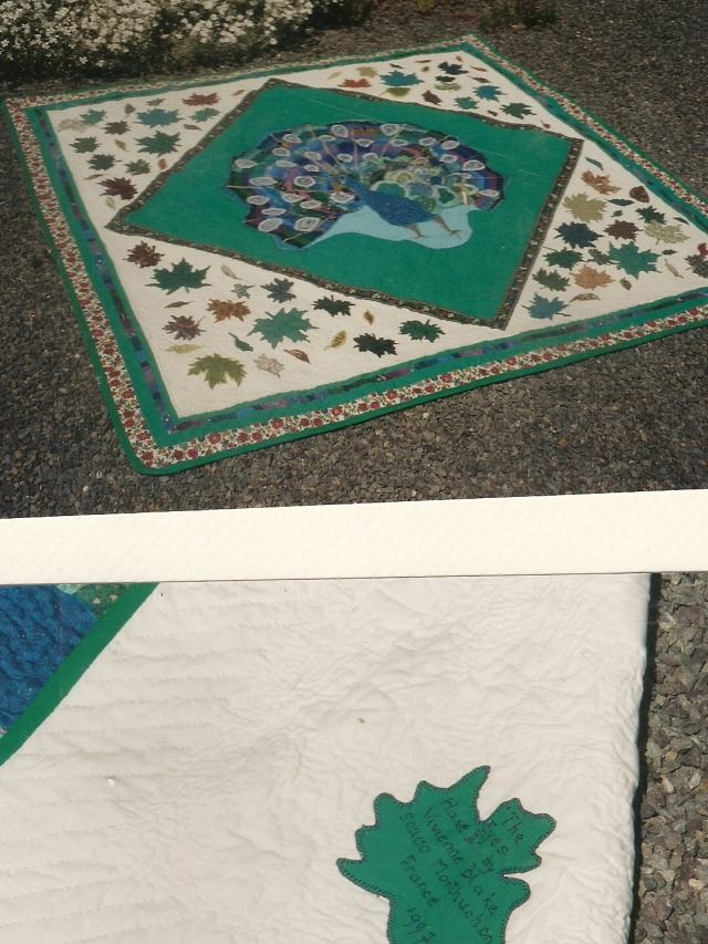 Peacock Quilt after hand quilting