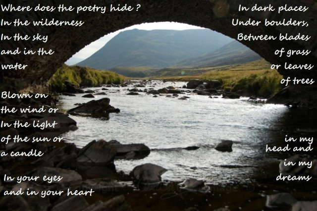 Where Does the Poetry Hide glenshee-14-1 by Jo Woolf
