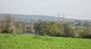 30.10.14 view along grassy path