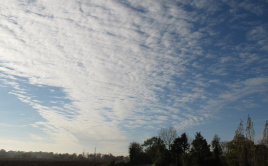 mackerel sky  6.11.14