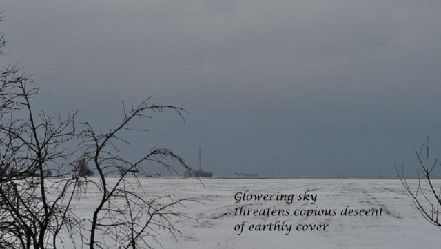 snowy haiga