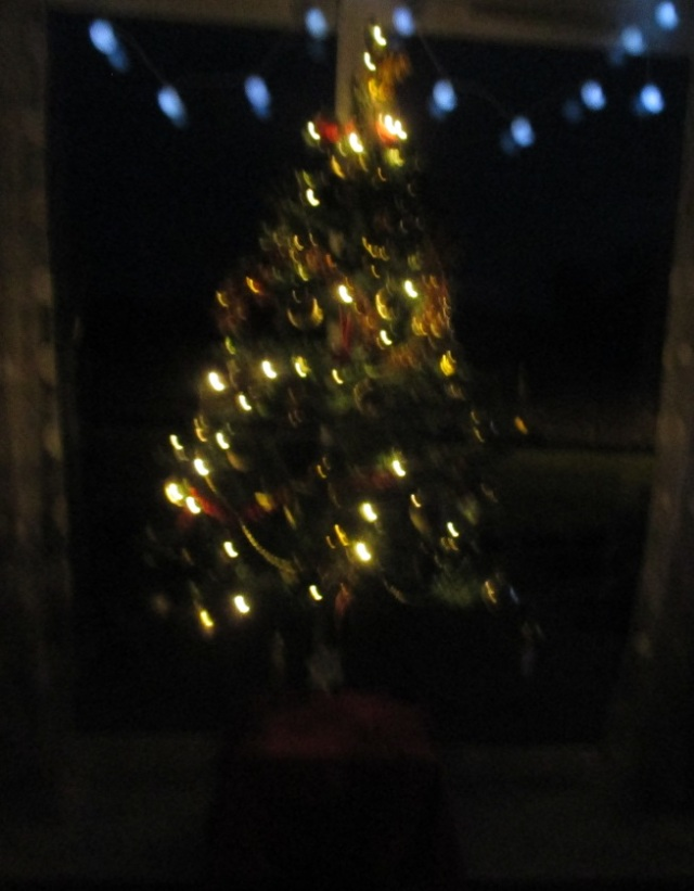 Christmas tree by night 2015