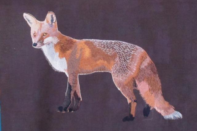 Jock's foxy