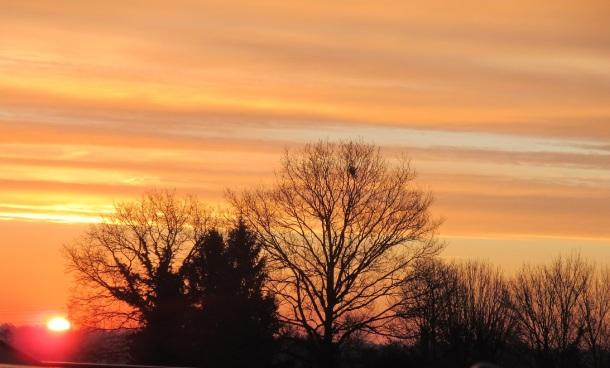 sunrise 8.3.16