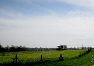 hay going 20.4.16